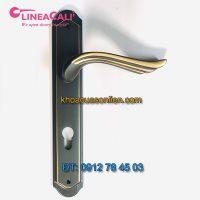 Báo giá nơi bán mẫu Khóa cửa thông phòng nhập khẩu Aria 1630-PL của LineaCali - Ý giá rẻ tại Hà Nội