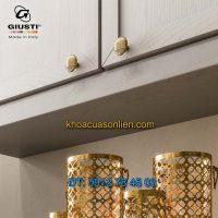 Báo giá nơi bán mẫu Núm cửa tủ màu đồng WP0817.000.00A8 35mm nhập khẩu Giusti nhập khẩu Italy giá rẻ tại Hà Nội
