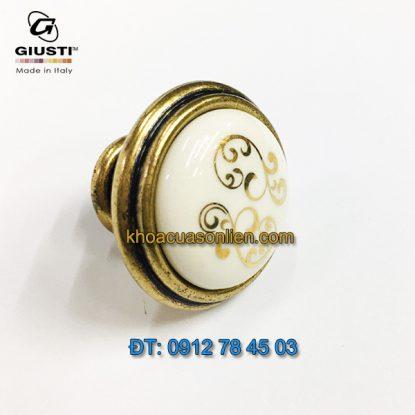 Nơi bán Tay nắm tủ cổ điển P88.01.P1.A8G 30mm họa tiết ánh vàng – Italy xịn tại Hà Nội